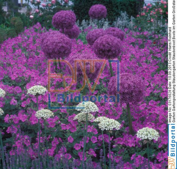 Details zu 0003176028 garten gartengestaltung for Gartengestaltung beete