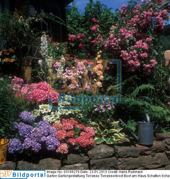 Details zu 0003168279 garten gartengestaltung terrasse for Gartengestaltung am haus