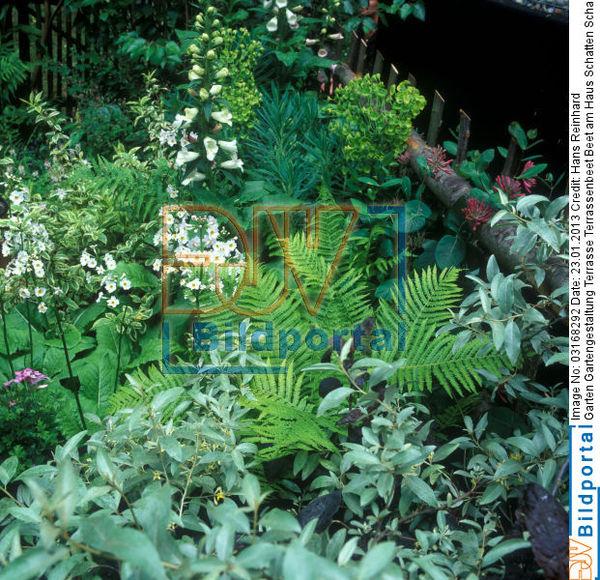 Details zu 0003168292 garten gartengestaltung terrasse for Gartengestaltung am haus