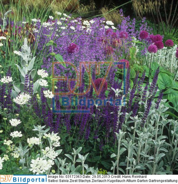 Details zu #0003172363 - Garten Gartrengestaltung Blumenbeet ...