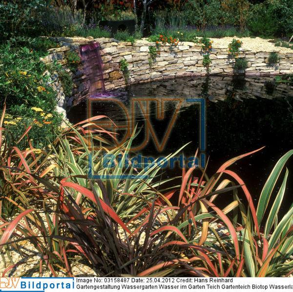 Details zu 0003158487 gartengestaltung wassergarten - Gartenteich wasserlauf ...