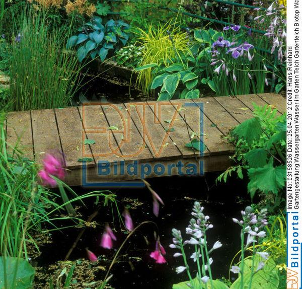 Poolgestaltung Garten: Poolgestaltung Im Garten Mit überdachung Jpg Pictures To
