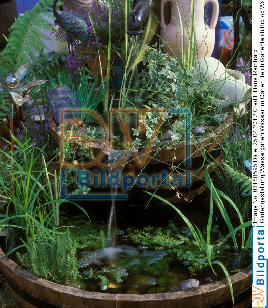 Details zu 0003158595 gartengestaltung wassergarten - Gartenteich wasserlauf ...