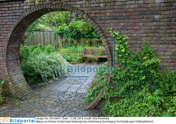 Details zu #0003184971 - Mauer im Garten Sichtschutz Gartengrenze ...