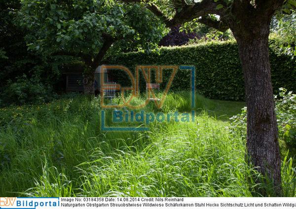 Details Zu 0003184358 Naturgarten Obstgarten Streuobstwiese