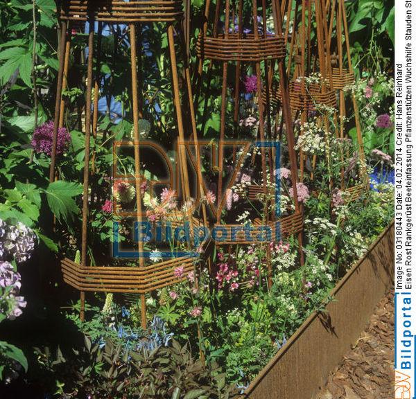 details zu 0003180443 pflanzenst tzen wuchshilfe stauden staudenbeet blumen im garten. Black Bedroom Furniture Sets. Home Design Ideas