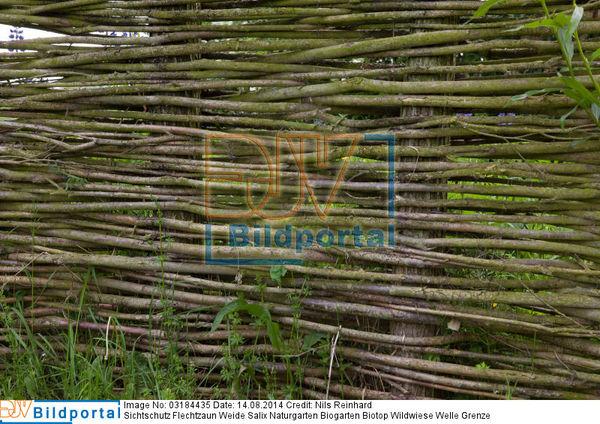 Details Zu 0003184435 Sichtschutz Flechtzaun Weide Salix