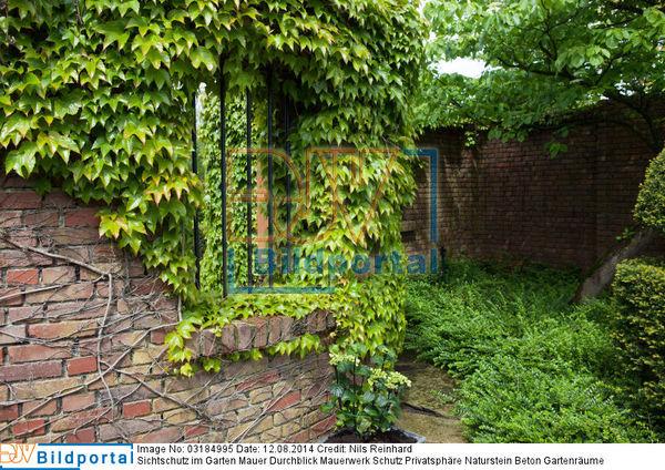 Details zu #0003184995 - Sichtschutz im Garten Mauer Durchblick ...