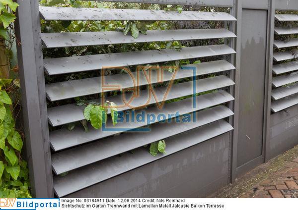 Details Zu 0003184911 Sichtschutz Im Garten Trennwand Mit