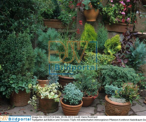 details zu 0003162524 topfgarten auf balkon und. Black Bedroom Furniture Sets. Home Design Ideas