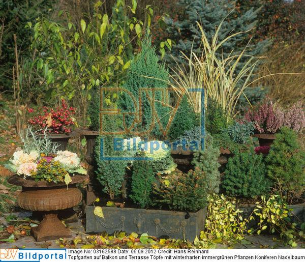 details zu 0003162588 topfgarten auf balkon und. Black Bedroom Furniture Sets. Home Design Ideas