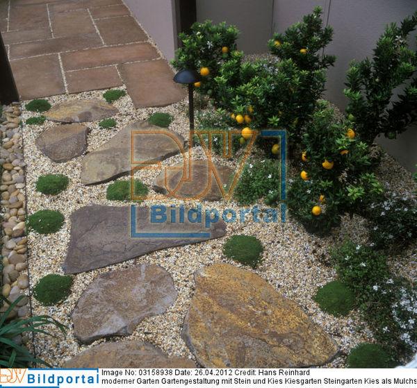 Details zu 0003158938 moderner garten gartengestaltung mit stein und kies kiesgarten - Moderner steingarten ...